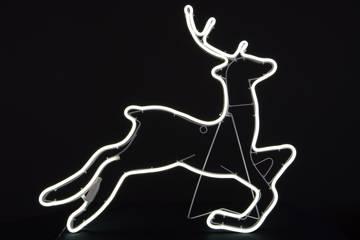 Hjort med neon-flex.