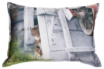 Pute med fyll, katten titter frem