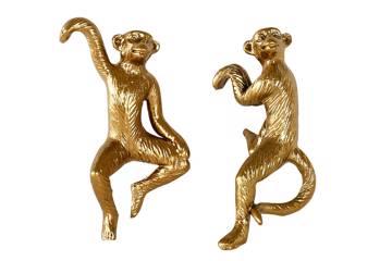 Hengende ape, gull