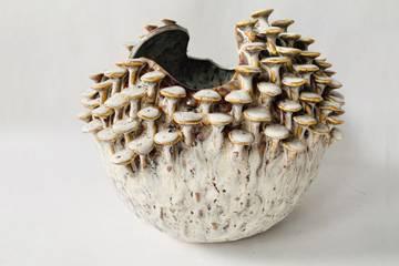 Vase, keramikk